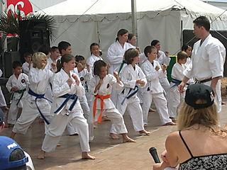 Karate_demo