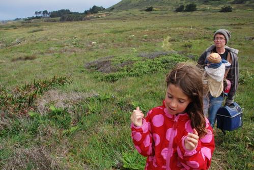 Coastal_meadow_hike