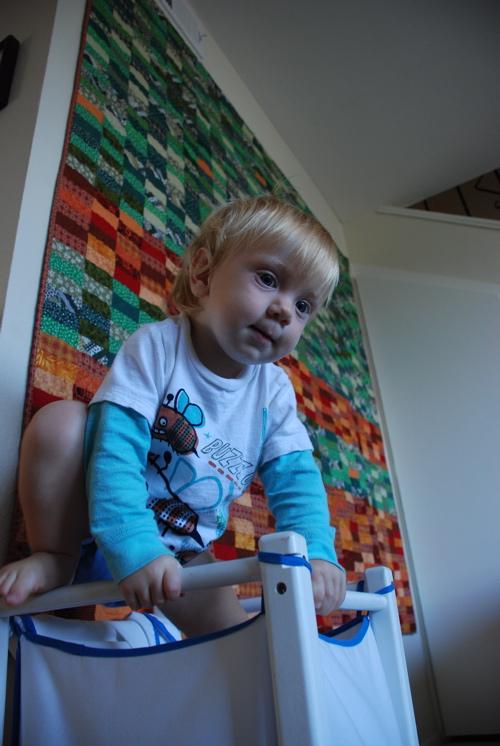 Dash_climbing_in_blocks