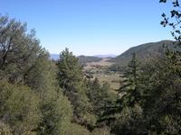Mendenhall_meadow_vista